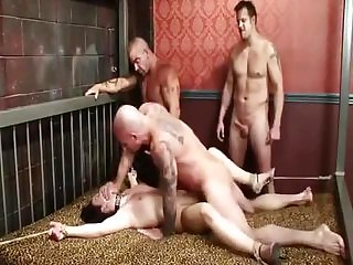WHITE WIFE VERY HARD GANGBANG